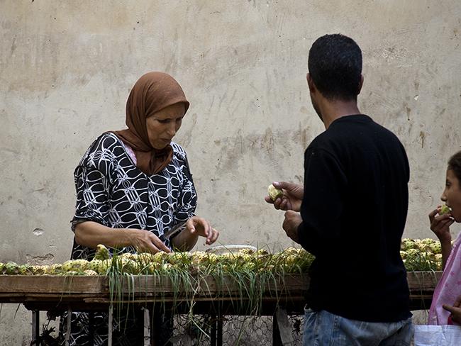 #morocco, Fez